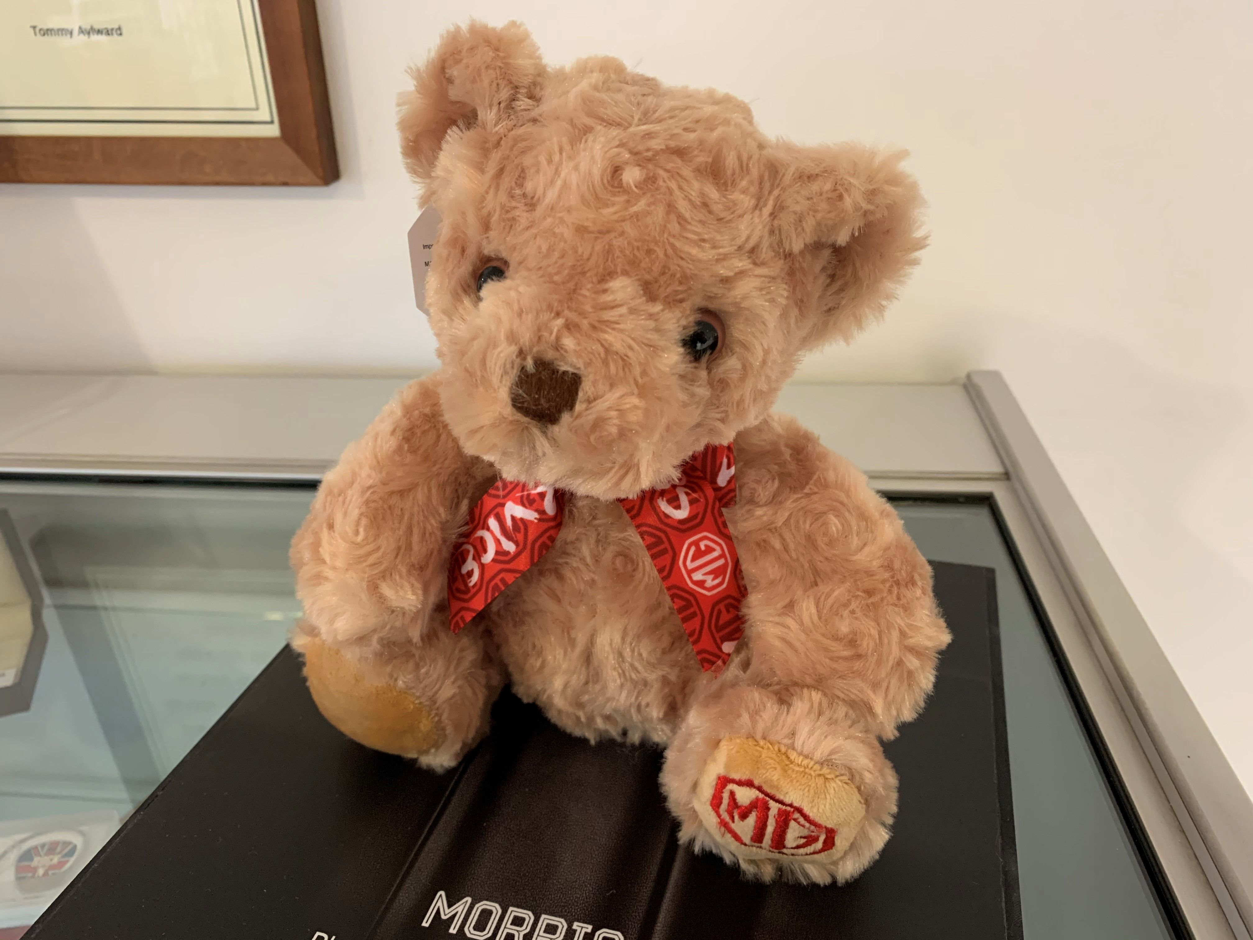 INTRODUCING THE 2021 MORRIS THE BEAR!